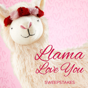 Llama Love You Sweepstakes